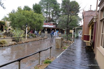 Rainy Day at the Disneyland Resort-136
