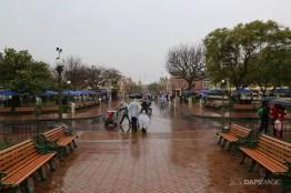 Rainy Day at the Disneyland Resort-45