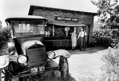 Berry Stand c.1920