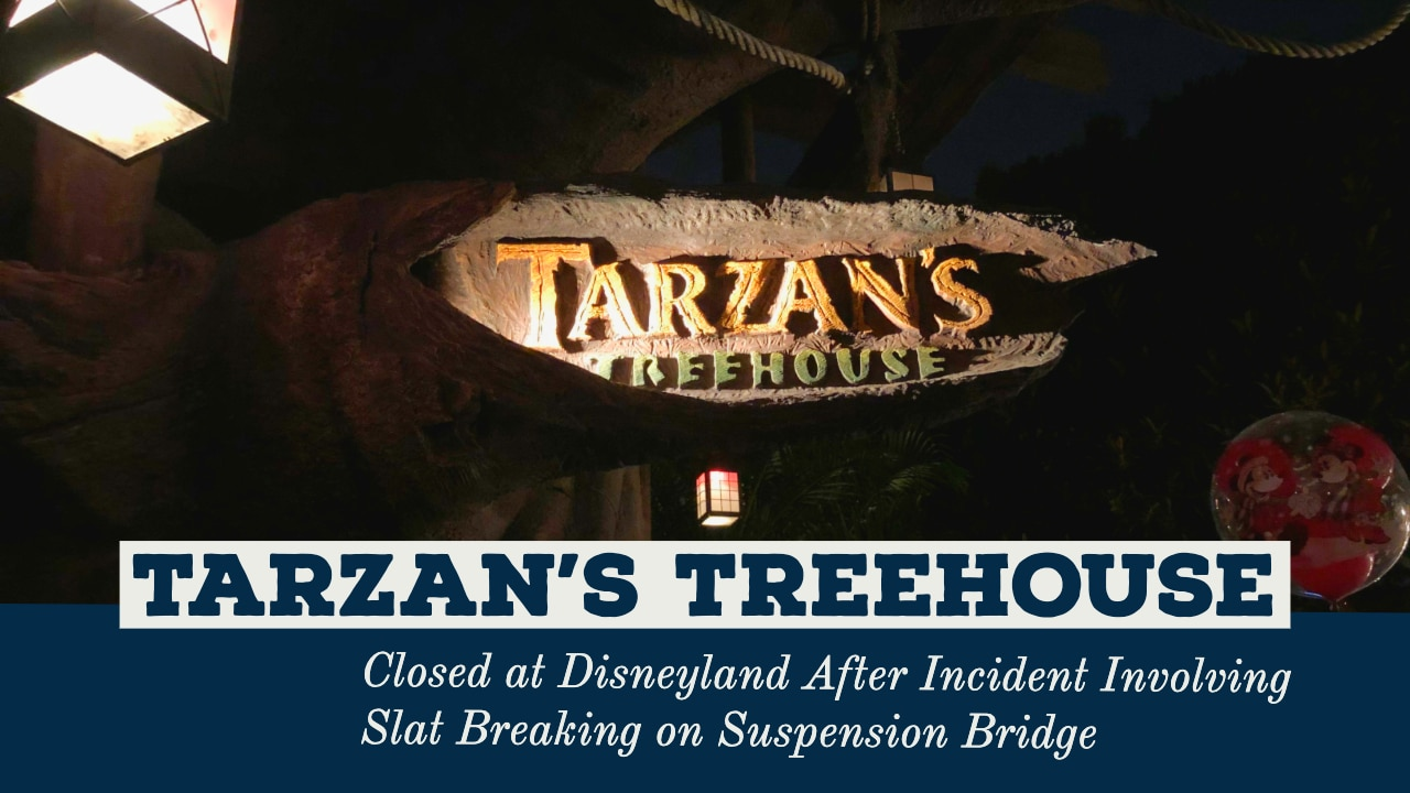 Tarzan's Treehouse Closed at Disneyland After Incident Involving Slat Breaking on Suspension Bridge