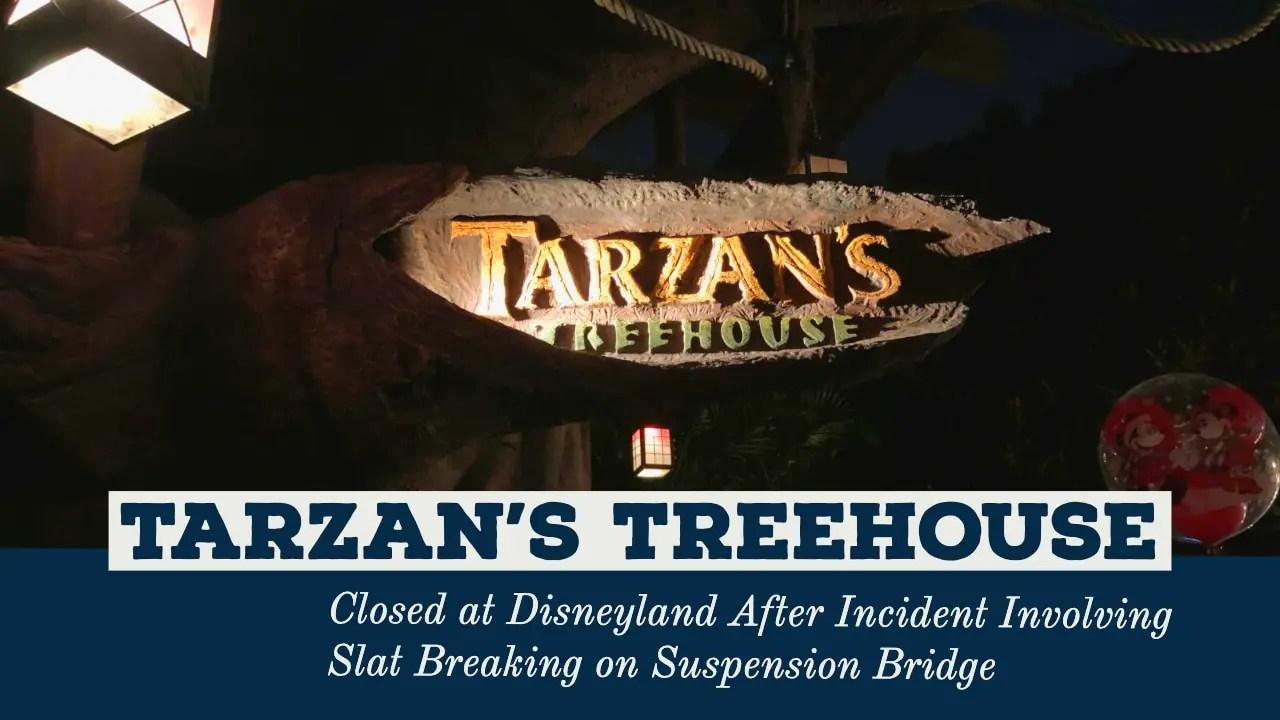 Tarzan's Treehouse Closed at Disneyland After Incident Involving Slat Breaking on Suspension Bridge