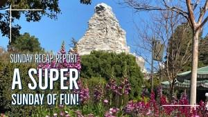 A Super Sunday of Fun! - Sunday Recap Report