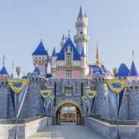 Disneyland Tickets and Annual Pass Prices Increase for 2020