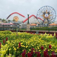 California Lifts Stay-at-Home Order - What That Could Mean For Theme Parks