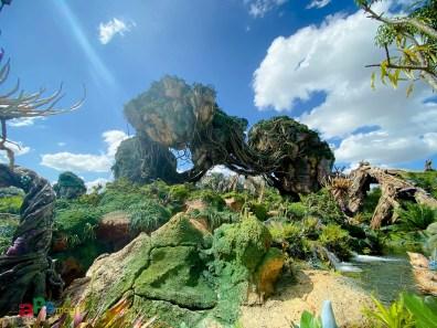 Disney's Animal Kingdom - Walt Disney World
