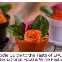 Foodie Guide to the Taste of EPCOT International Food & Wine Festival