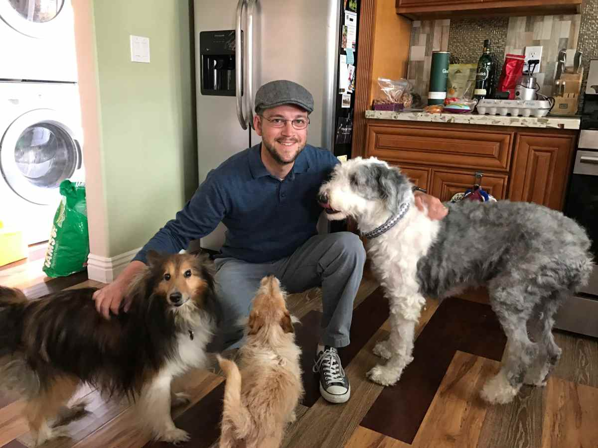 Mr. DAPs and Dogs - International Dog Day