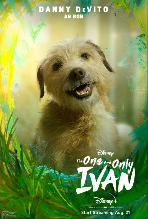 Bob the dog, voiced by Danny DeVito, in Disney's THE ONE AND ONLY IVAN