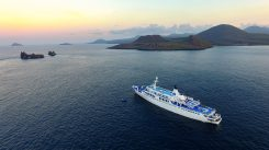 On the Adventures by Disney Galapagos Islands Expedition Cruise, families will island-hop from one extraordinary adventure to the next with five nine-day, eight-night sailings aboard the boutique expedition ship, the Galapagos Legend. (Adventures by Disney)