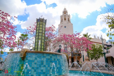 A spring view of Carthay Circle Restaurant with blooming Tabebuia trees