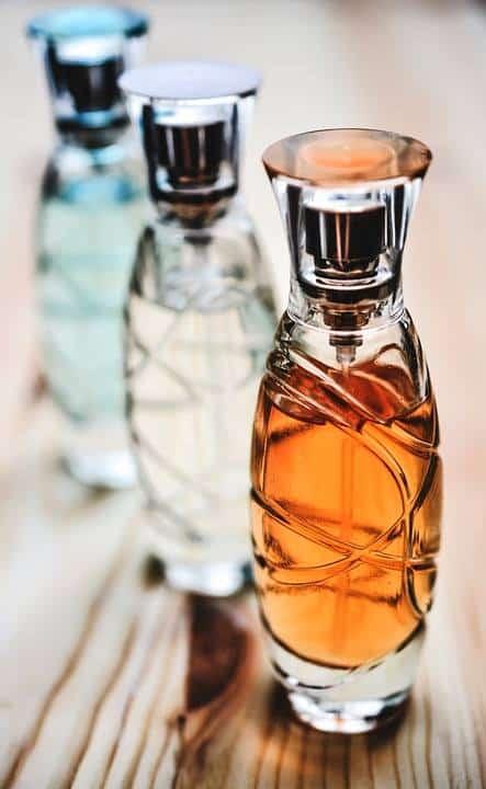 Les parfums d'automne et d'hiver