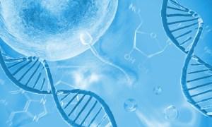 تحليل تكسر المواد الوراثية