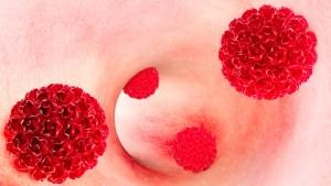 الأمراض المعدية على الصحة الإنجابية