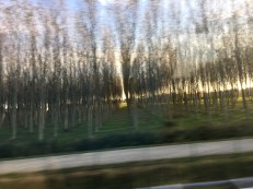 On the bus from Milan