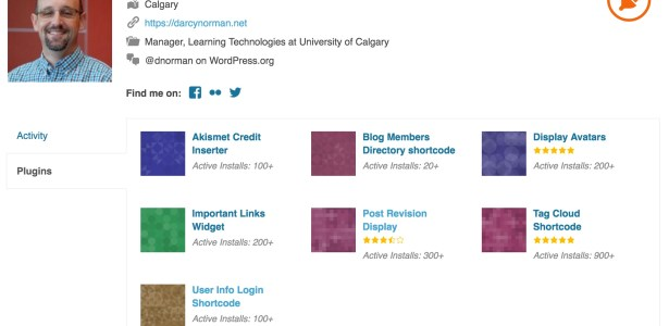Updating my WordPress plugins