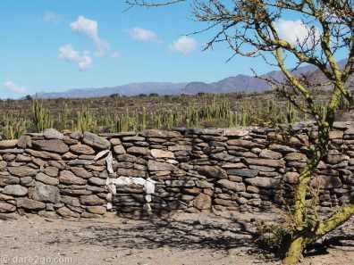 Another decorated wall, quartz rocks depicting a Llama or Alpaca.