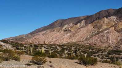 RP33, Parque Nacional Los Cardones: coming down towards Cachi