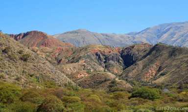 RP33 Province of Salta: at around 2,000m there are many trees and cacti covering the colourful mountains.