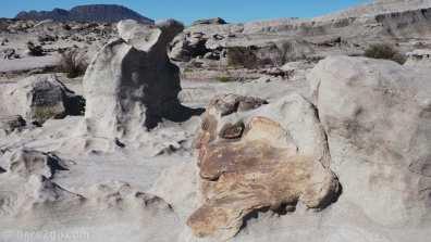 Ischigualasto: strangely shaped rocks formed by erosion