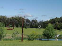Looking across the pond at the Pablo Atchugarry sculpture park. 30 hectares to wander around.