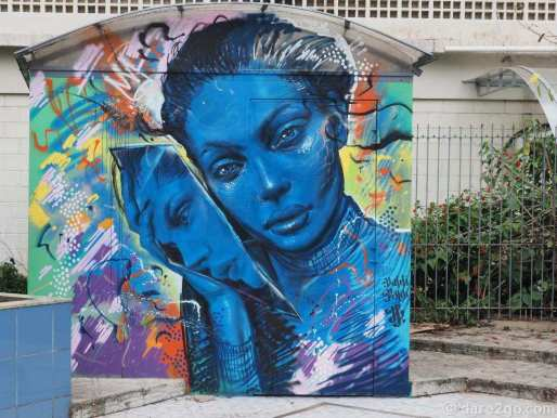 This street art by 'Valdi Valdi' is on a kiosk in a small park in the city centre of Florianópolis.