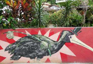 Sorry that the beak of this ibis is cut off – we photographed it from our truck and couldn't really stop. This was the front wall of a residential property close to Lagoa da Conceição.