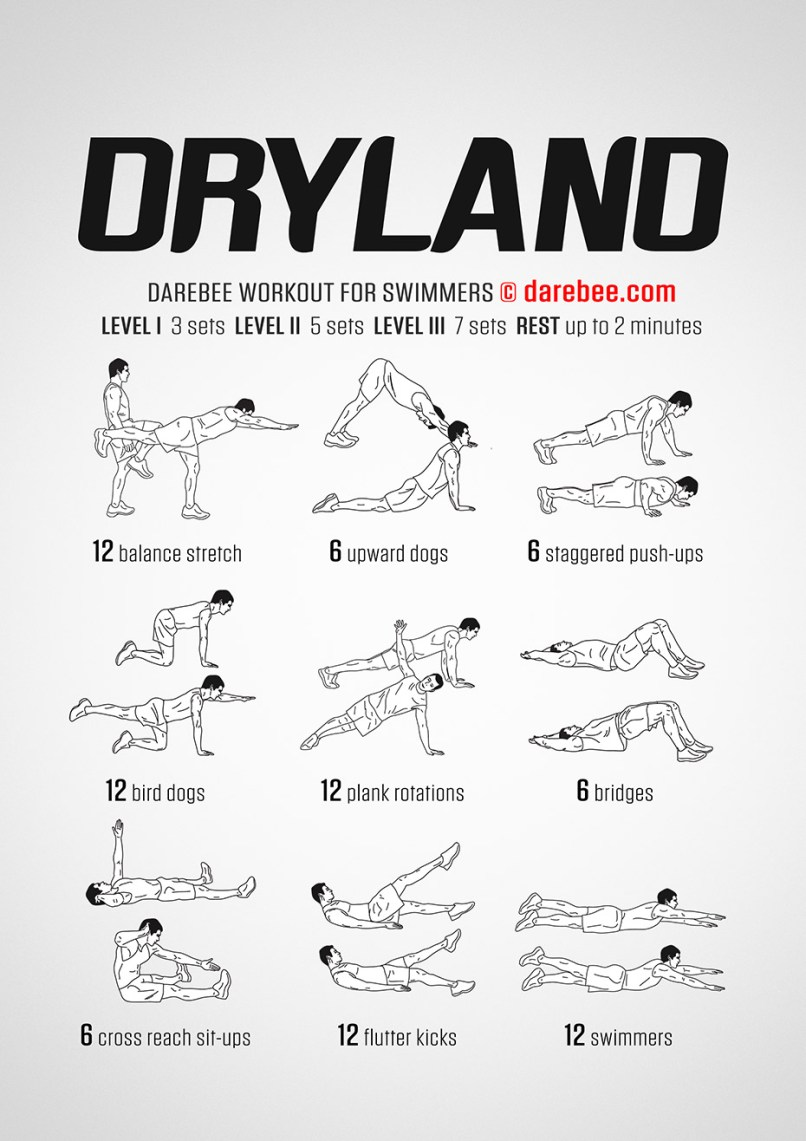 dry land training for swimmers | Diydrywalls org