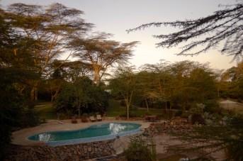 Wildebeest Eco Camp, Nairobi.