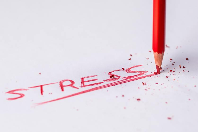 """Photo of a red pencil that has written the word """"stress"""" and underlined it multiple times"""