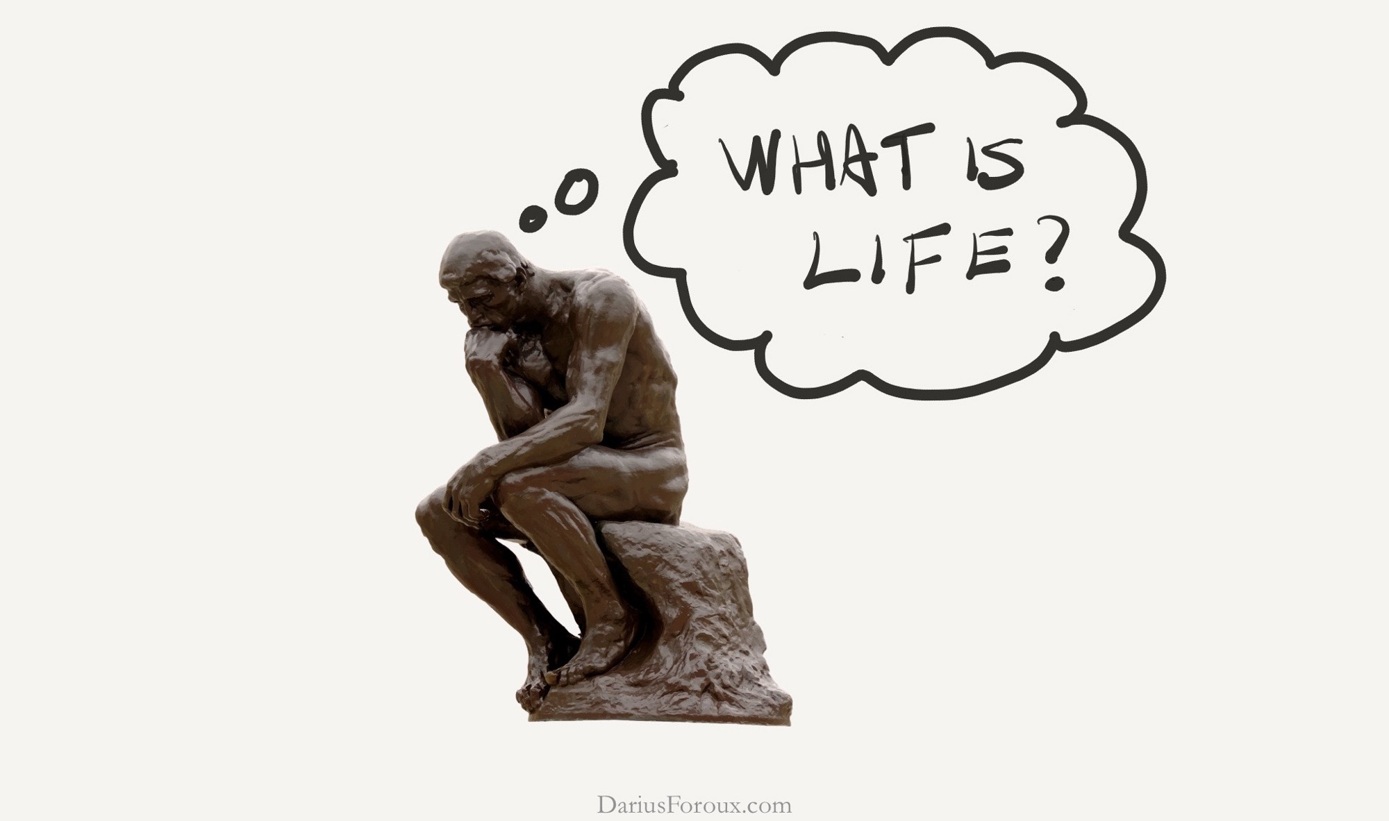 Image result for what is 'life'