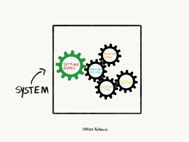 goals and systems