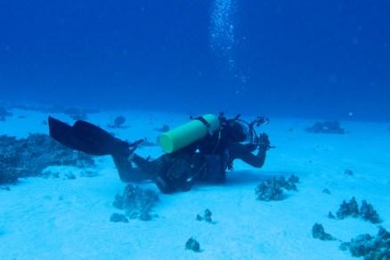 Facing the Deep