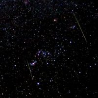 Leonids in Orion