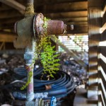 Household Water Pressure Rregulator