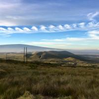 Kelvin-Helmholtz Waves in the Saddle
