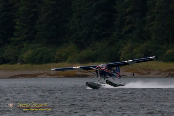 de Havilland Canada DHC-2 Beaver at Pavlof Harbor
