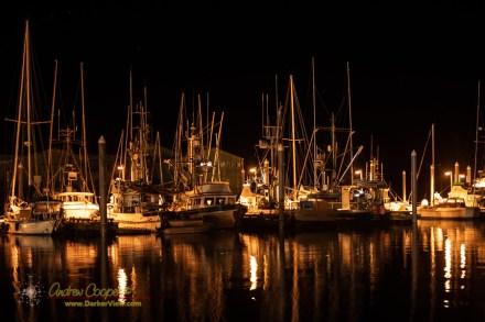 Petersburg Harbor at Night