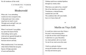blodeuwedd-poem