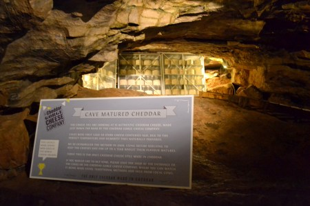 cheddar cave cheeses