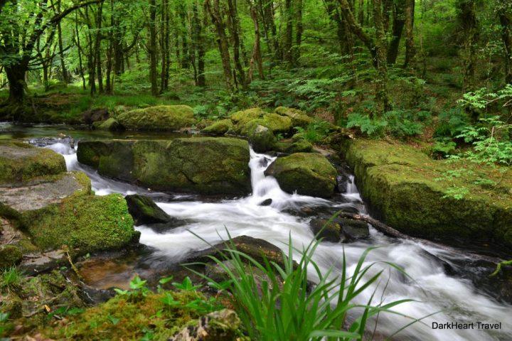 River Fowey at Golitha Falls Nature Reserve
