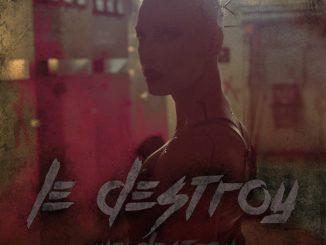 Monster (Remix) - Le Destroy