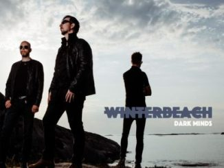 WinterBeach - Dark Minds
