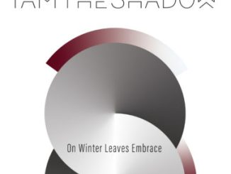 On Winter Leaves Embrace - IAMTHESHADOW