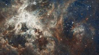 Several million young stars are vying for attention in this NASA Hubble Space Telescope image of a raucous stellar breeding ground in 30 Doradus, located in the heart of the Tarantula Nebula. Early astronomers nicknamed the nebula because its glowing filaments resemble spider legs. 30 Doradus is the brightest star-forming region visible in a neighboring galaxy and home to the most massive stars ever seen. The nebula resides 170,000 light-years away in the Large Magellanic Cloud, a small, satellite galaxy of our Milky Way. No known star-forming region in our galaxy is as large or as prolific as 30 Doradus. The composite image comprises one of the largest mosaics ever assembled from Hubble photos and includes observations taken by Hubble's Wide Field Camera 3 and Advanced Camera for Surveys. The Hubble image is combined with ground-based data of the Tarantula Nebula, taken with the European Southern Observatory's 2.2-meter telescope in La Silla, Chile. NASA and the Space Telescope Science Institute are releasing the image to celebrate Hubble's 22nd anniversary. Collectively, the stars in this image are millions of times more massive than our Sun. The image is roughly 650 light-years across and contains some rambunctious stars, from one of the fastest rotating stars to the speediest and most massive runaway star. The nebula is close enough to Earth that Hubble can resolve individual stars, giving astronomers important information about the stars' birth and evolution. Many small galaxies have more spectacular starbursts, but the Large Magellanic Cloud's 30 Doradus is one of the only extragalactic star-forming regions that astronomers can study in so much detail. The star-birthing frenzy in 30 Doradus may be partly fueled by its close proximity to its companion galaxy, the Small Magellanic Cloud. The image reveals the stages of star birth, from embryonic stars a few thousand years old still wrapped in cocoons of dark gas to behemoths that die young in