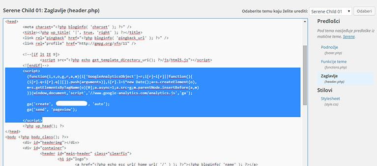 Postavljanje traking koda u WP