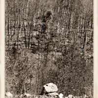Stone - Aged Photos