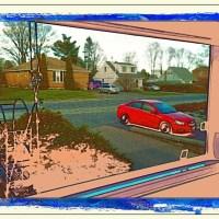 Driveway View