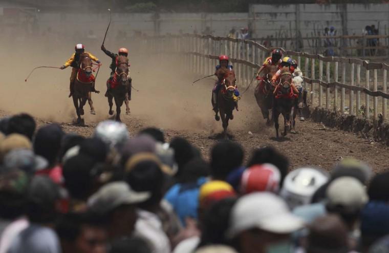 Ребенка жокеев гонки лошадей на ипподроме за пределами Бима.  Наградой для победителя нескольких наличные деньги для своей семьи, и слава для жокея.  Главный приз составляет один миллион рупий ($ 100).  Те, кто выиграет их группы получают две коровы.  Фото сделано 18 ноября 2012.  (Beawiharta / Reuters)