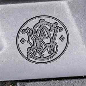Dark Star Gear S&W Logo