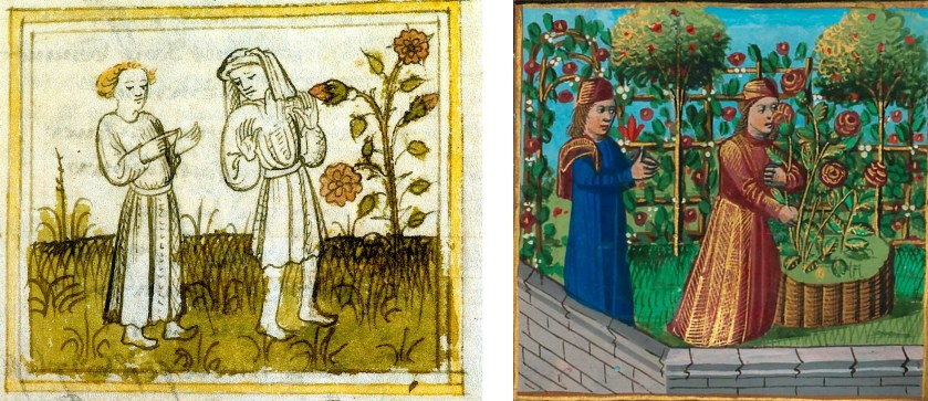 L: Roman de la Rose (Bel Acueil, detail), BL Londen, Ms. Egerton 1069, f. 21v R: Roman de la rose (Bel Acueil, detail), BNF Parijs, Ms. fr 24392, f. 175